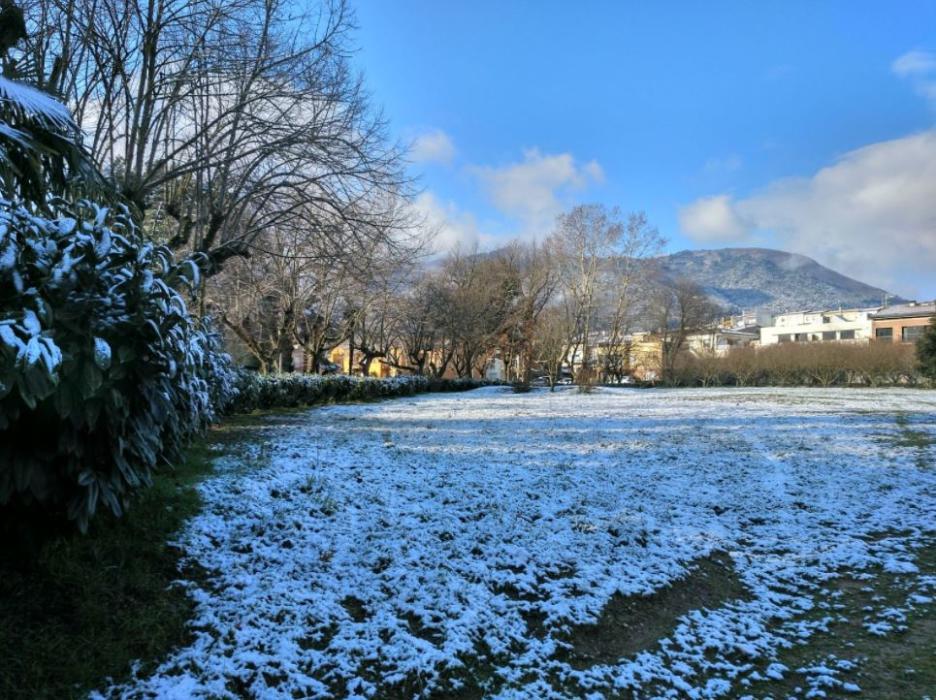 nevades cotes baixes